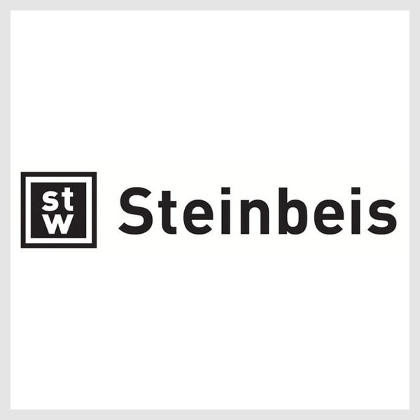 "THE STEINBEIS INNOVATION GGMBH – INNOVATION CENTRE ""EUROPEAN PROJECTS"""